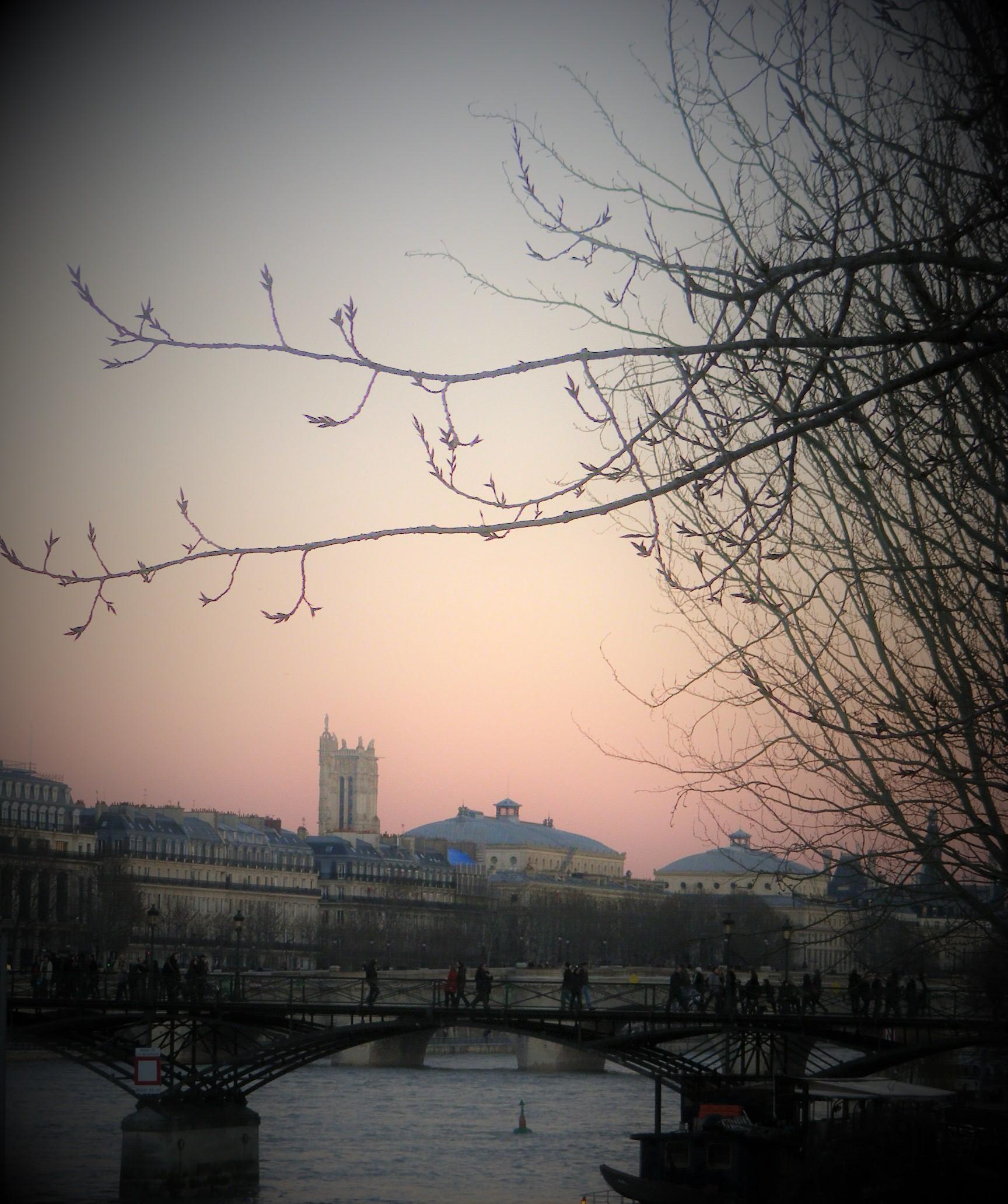 Le Pont des Arts- Les Ponts de Paris